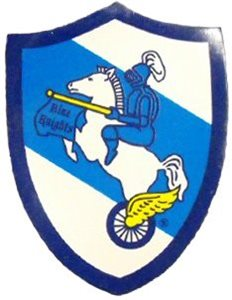Blue Knights Magnet
